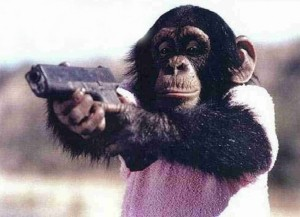First Chimp Ever Allowed Into The NRA