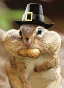 "It's Like The Man Said: ""Blessed Are The Nut Hoarders For They Shall Have Food In The Winter."" The Hat's Just To Keep My Ears Warm."