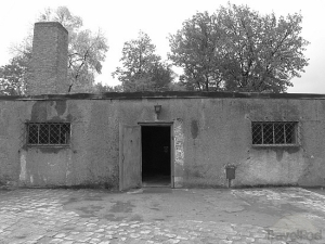 Donald Trump Will Use Gas Chamber/crematorium Combinations Like This One In Auschwitz, Germany To Eliminate The Muslim/Mexican Problem Once He Becomes President