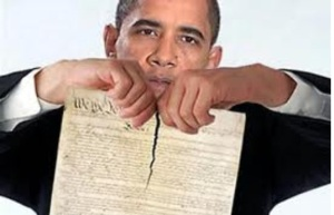 President Obama Revoking The Second Amendment