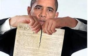 President Obama Revoking The Second Amendment