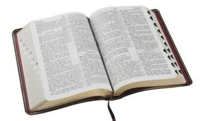 bible4-9